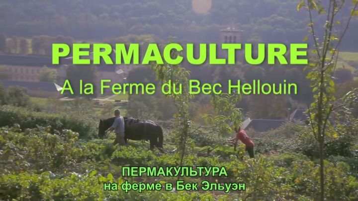 Пермакультура на ферме в Бек Эльуэн